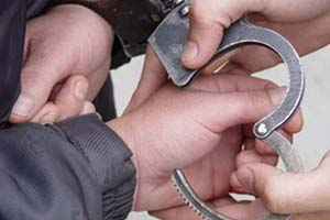 Запорожский полицейский украл оросительную систему стоимостью 2,5 миллиона